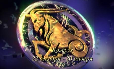 Программа 13 знаком зодиака